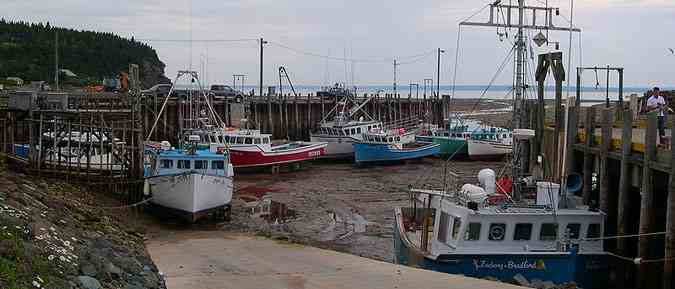 The Bay of Fundy harbour get travel insurance online with Healthquotes