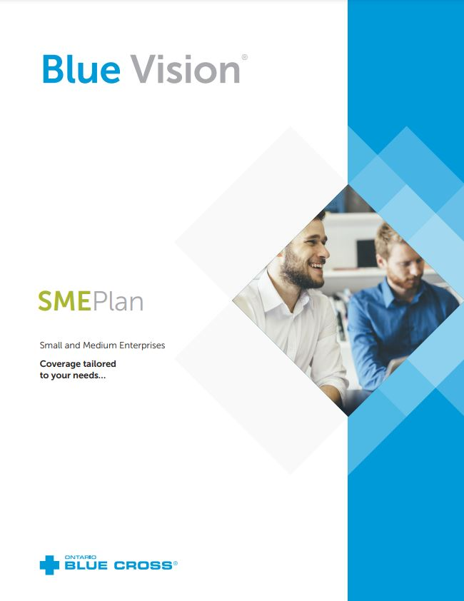 Blue Cross SME Plan- An Alternative to Traditional Employee Benefits